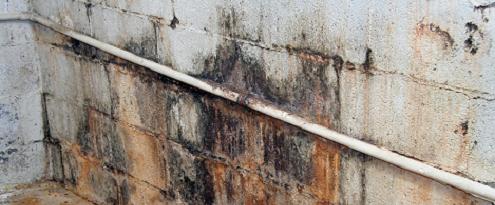 Lekkage opsporen in kelder muur